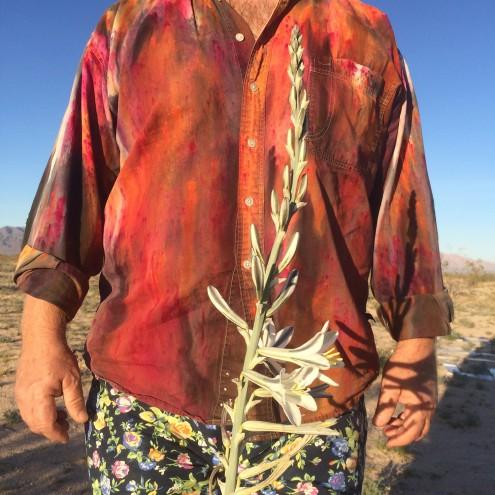 My Desert Lily