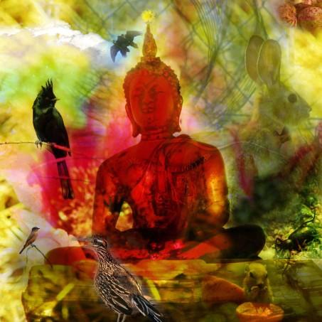 desertbuddha